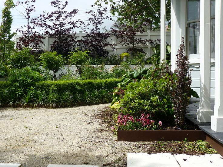 Corten edging, pleached Copper Beech | Beauchamp, HEDGE Garden Design & Nursery
