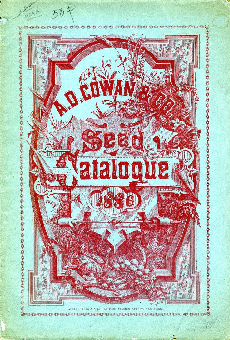 Poster design 19th century - Letterology The Nature Of Type Design In The 19th C Part One