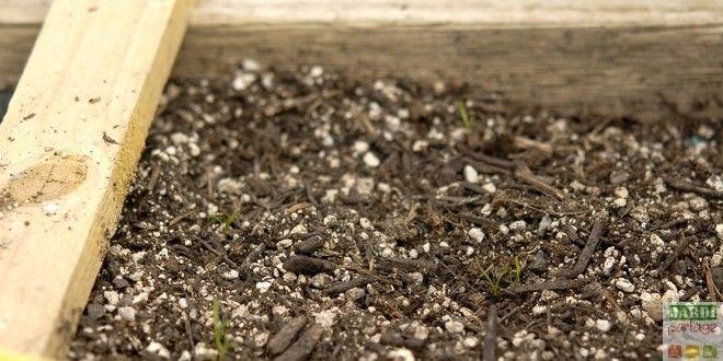 """2 ème épisode de la série consacrée au potager en carré. Aujourd'hui, on s'intéresse au remplissage des carrés. La """"terre"""" doit répondre à tous les besoins des plantes. Quels sont ces besoins, et comment préparer sur-mesure un substrat de culture que les plantes installées vont adorer ? Réponses... http://www.jardipartage.fr/carre-potager-quelle-terre/"""