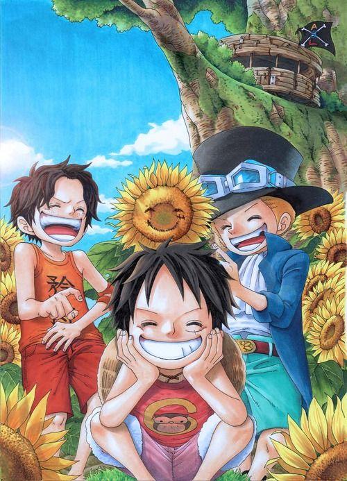 Gaby Otaku: Especial 12 e 13: Tentando falar que nem a Daisy e Imagens e Gifs do Trio Ace, Luffy e Sabo de One Piece