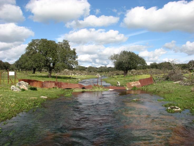 Entre Arroyo de la Luz y Brozas discurre una Cañada que aquí cruza el Arroyo de Ancianes. Después de las copiosas lluvias de invierno discurre caudaluso y alegre hacia el embalse de Araya.