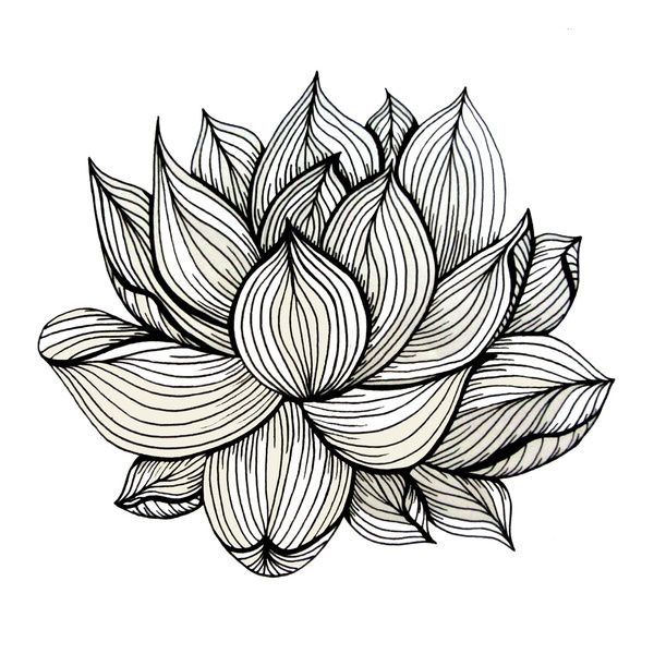 Lotus Flower, Black and white, Nature, Organic design, drawing, abstract, unique, lines, pattern, Art Print