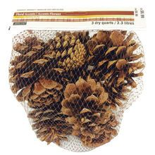 Harvest Market Large Scented Pinecones By Ashland®