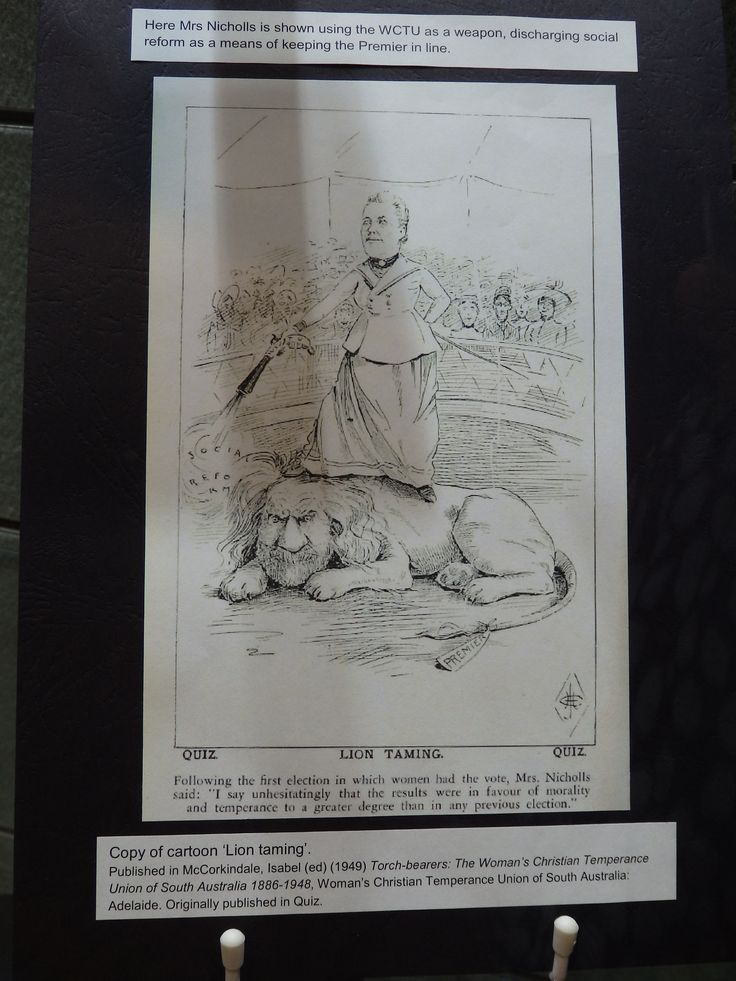 Here is a cartoon depicting Elizabeth Webb Nicholls as a lion tamer, keeping the lion (the Premier at the time, Premier Kingston) in line with the weapon of the Woman's Christian Temperance Union (WCTU).  On display at the Adelaide Town Hall as part of the 120th anniversary of South Australian women's suffrage.