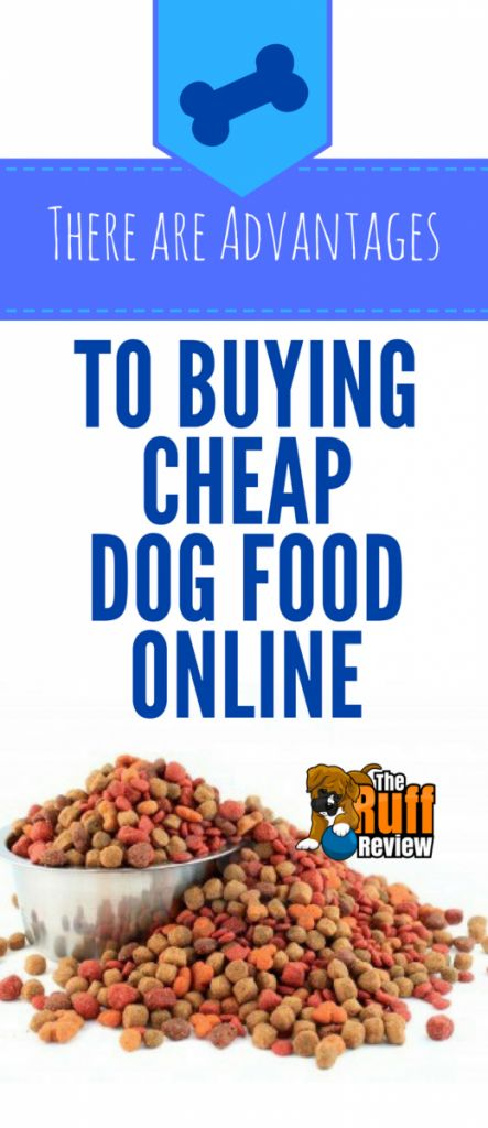There Are Advantages To Buying Cheap Dog Food Online