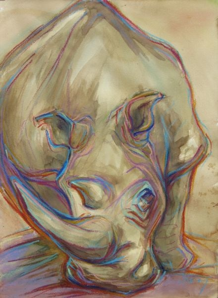 South Africa, rhino by artist Jennifer Keim, love her animal portraits & powerful simplicity