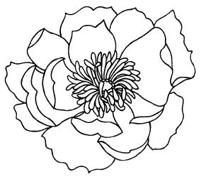 This would be a nice graphic to embroider!