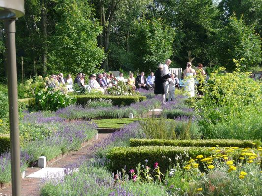 1000 Images About A2 And Southeast Wedding On Pinterest Ann Arbor Botanical Gardens And