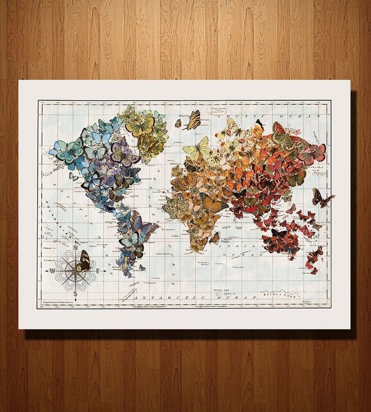 Butterfly Migration Map Print 109 best Maps