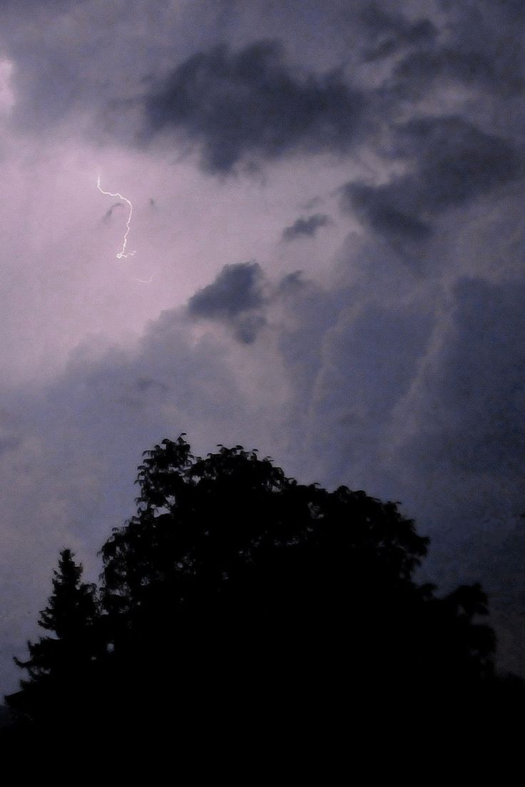 High Val Parma Forest  -  The Lagoni Nightly thunderstorm at Lagoni