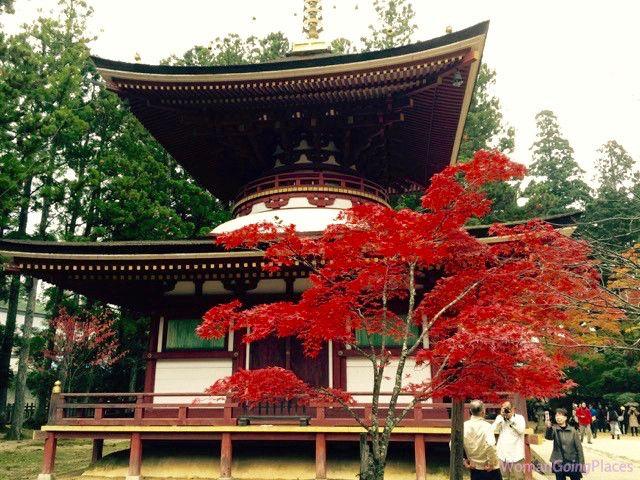 Autumn in Japan - http://womangoingplaces.com.au/autumn-in-japan/