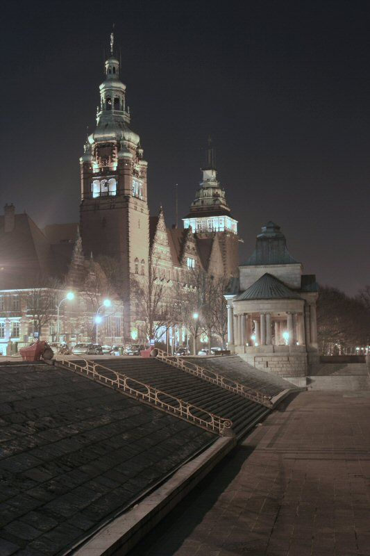 Szczecin's icon by night