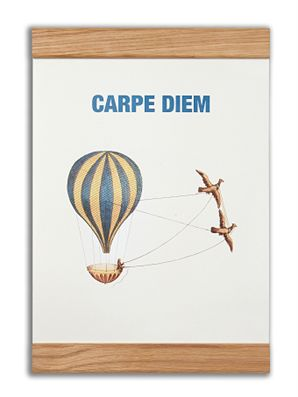 """Carpe diem"" #messageearth #sustainable #poster #sustainability #eco #design #ecodesign #vintage"
