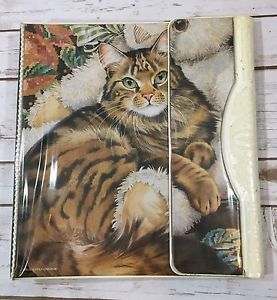1000 ideas about 3 ring binders on pinterest ring binder mini binder and kitchen towels for Trapper keeper 2 sewn binder with exterior storage