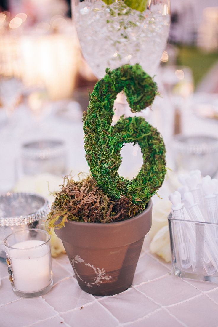 Moss Table Numbers | Full Spectrum Photography | TheKnot.com