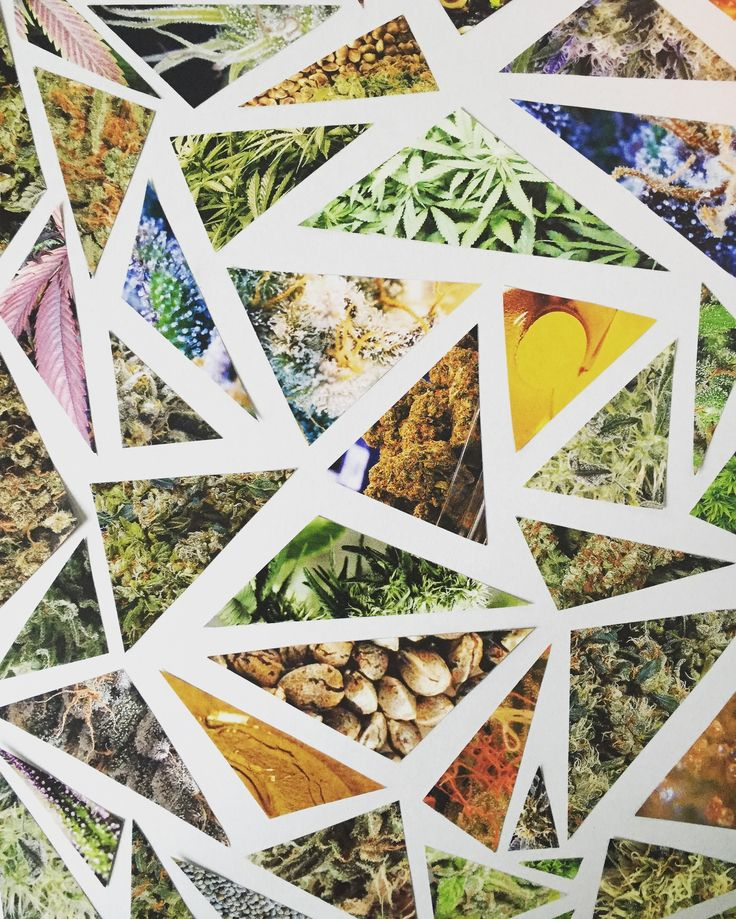 High Times Magazine Collage Wall Art