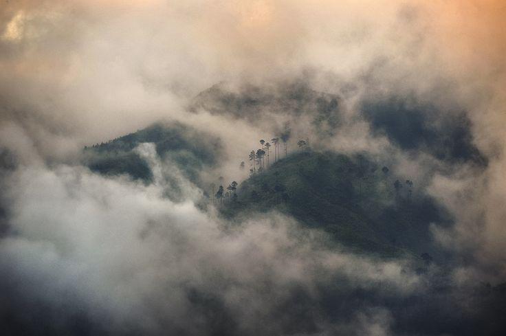 2015 GLF Photo competition - Misty haze