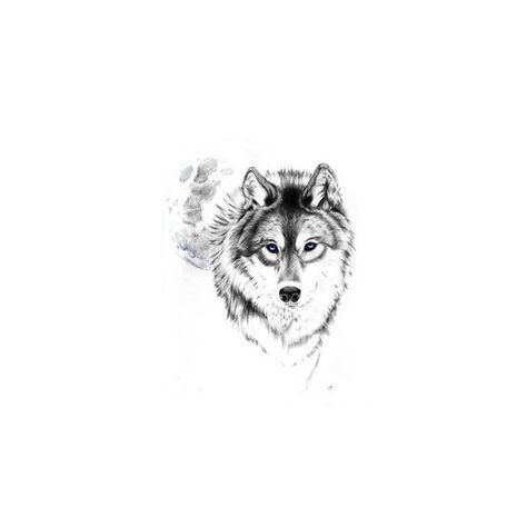 wolf tattoo Tumblr love this wolf and moon. best stuff ❤ liked on Polyvore featuring accessories and art
