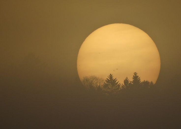Un soleil pâle derrière la brume. L'Auberson, avril 2014.