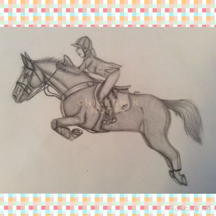 Another example of a realistic drawing of a horse and girl done by chicken. This drawing took her about 1 hour and would be about $10. Want one? Contact us at aaliyahwyatt@iinet.net.au