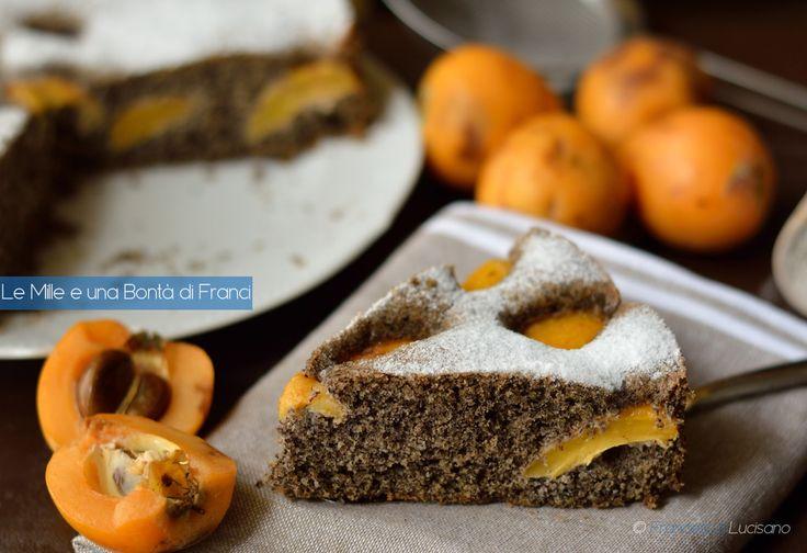 Fra le ricette con le nespole ecco la torta saracena soffice alle nespole, un tripudio di gusto e leggerezza. Saprà come conquistare grandi e piccini.