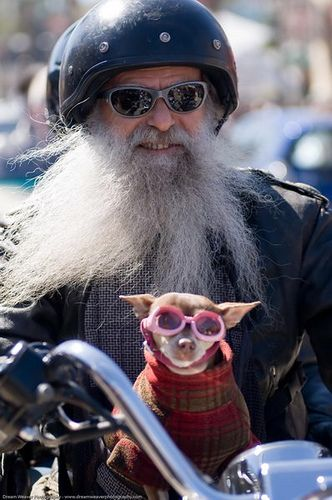 Bearded rider & his pup