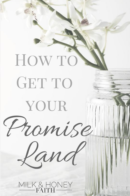 How to get to your Promise Land - Milk & Honey Faith Key scriptures that guide you on the path towards your promise.  Get to your Promise Land / Spiritual Promises / God's plan for your life