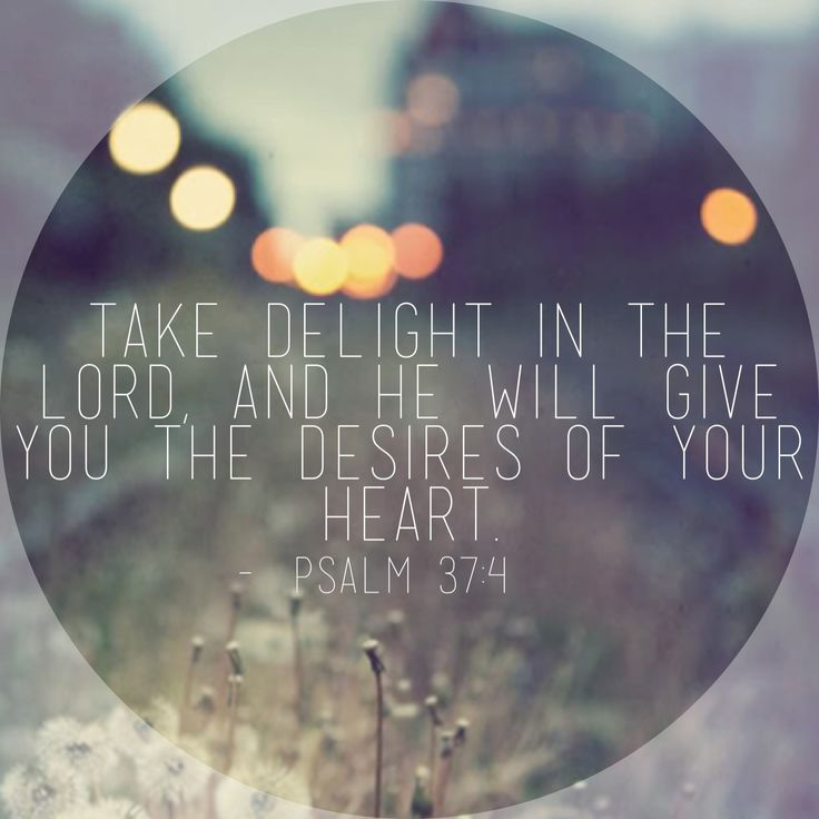 Favorite quote/verse: Psalm 37:4