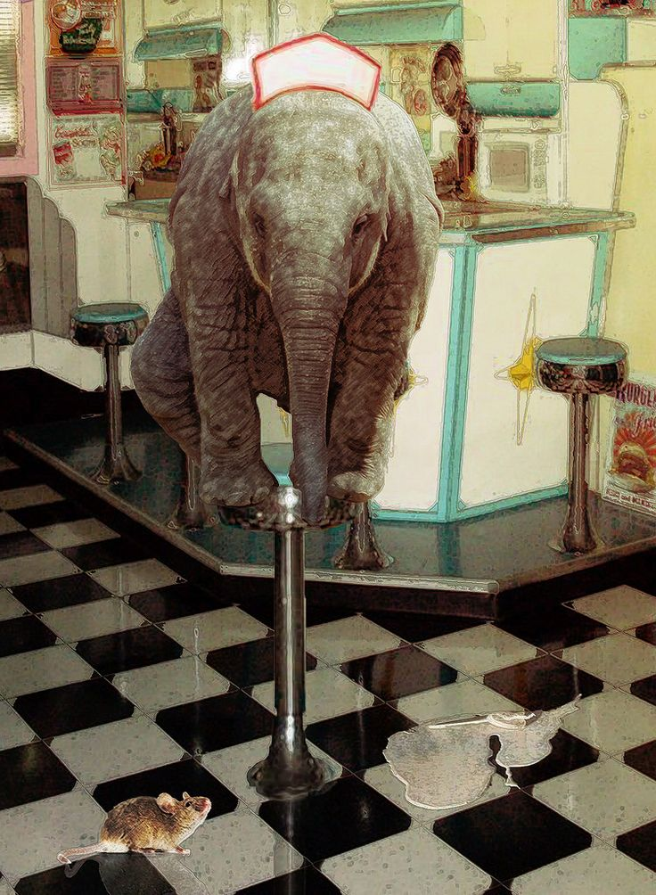 17 beste afbeeldingen over surrealism op pinterest foto 39 s lege kamer en surrealisme - Water kamer model ...