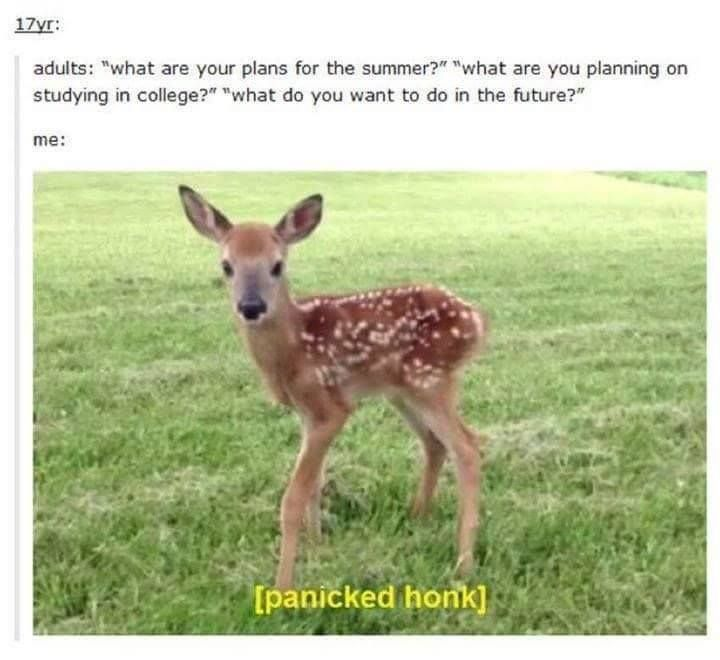 51 Times We Laughed Our Asses Off On Tumblr - Funny Gallery