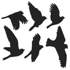 flying bird stencils | Flying Birds wall appliques | Dezign With a Z