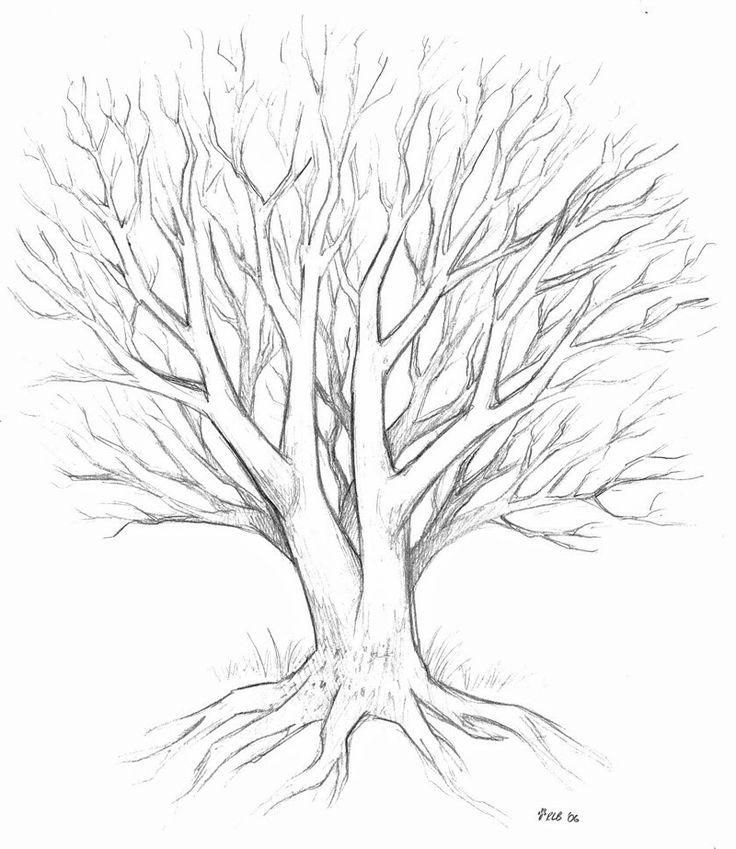 Cele mai bune 25+ de idei despre Blank family tree pe Pinterest - blank family tree template