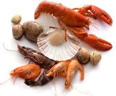 Shellfish Allergies