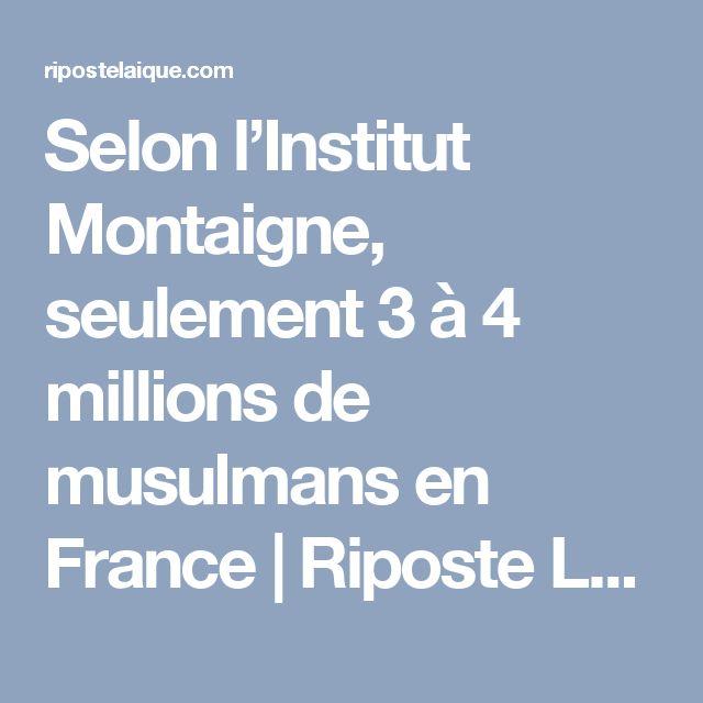 Selon l'Institut Montaigne, seulement 3 à 4 millions de musulmans en France | Riposte Laïque