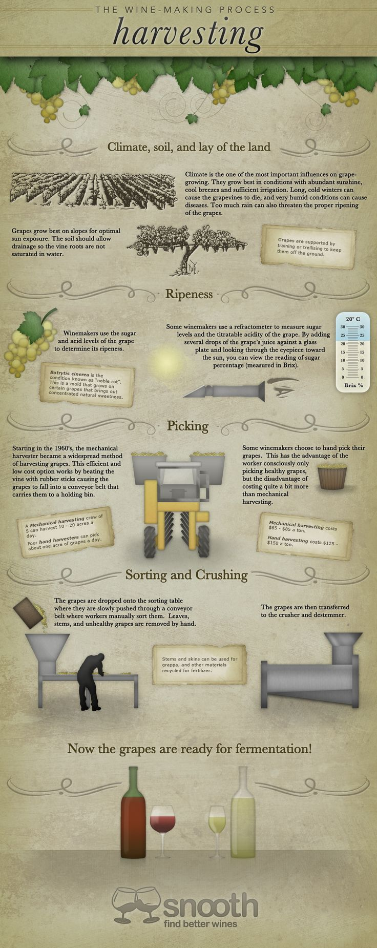 """""""The Wine Making Process: Harvesting"""" Nov-2011 by Snooth.com - Infographic"""