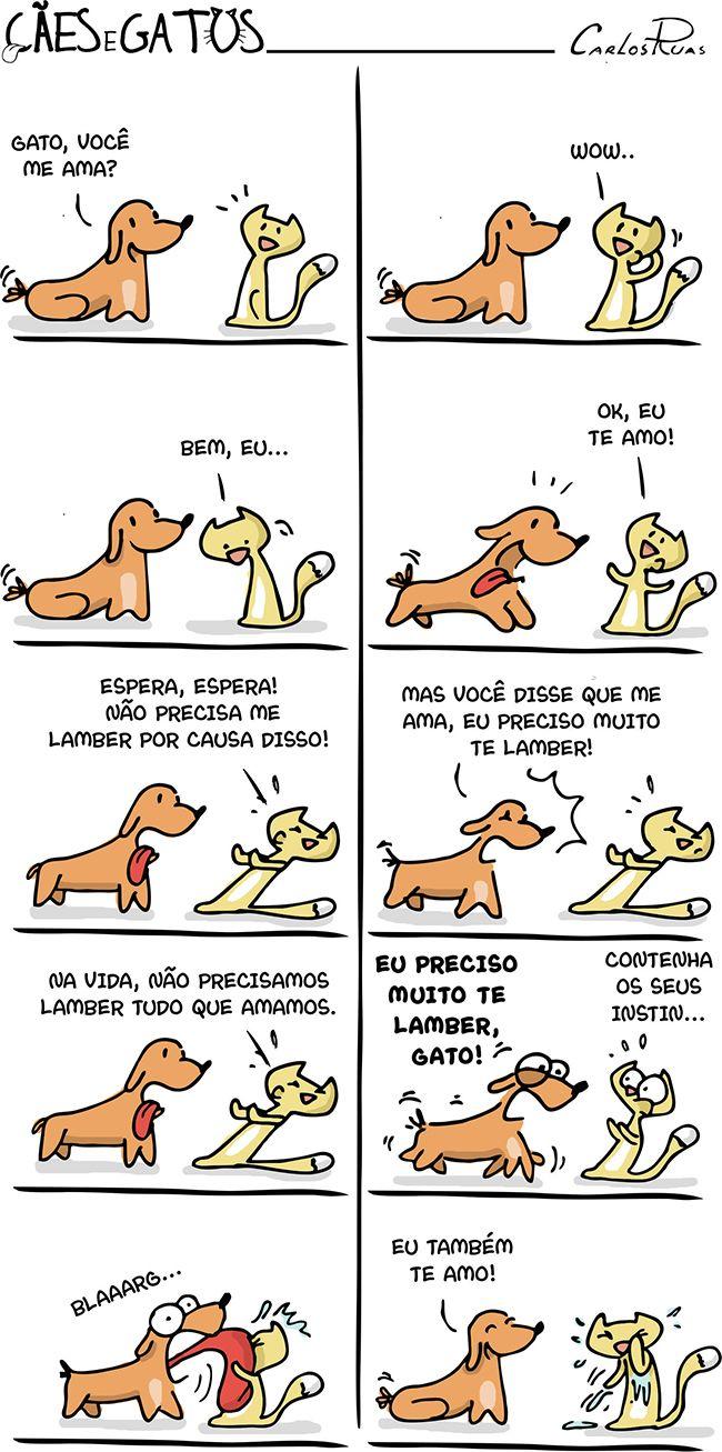 Cães e Gatos – Você me ama?