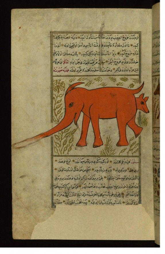 Pin On Animal In Islam An Essay Elephant