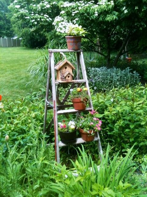 This ladder was a yard sale buy for $3. I anchored it in my garden and added flowers. Each pot has been secured with screws to the steps. Drilled holes into legs and stuck rebar in to anchor it.
