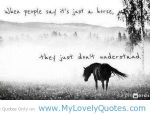 equestrian quotes   People say its just a horse - quotes on horses - My Lovely Quotes