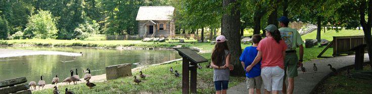 Levi Jackson State Park