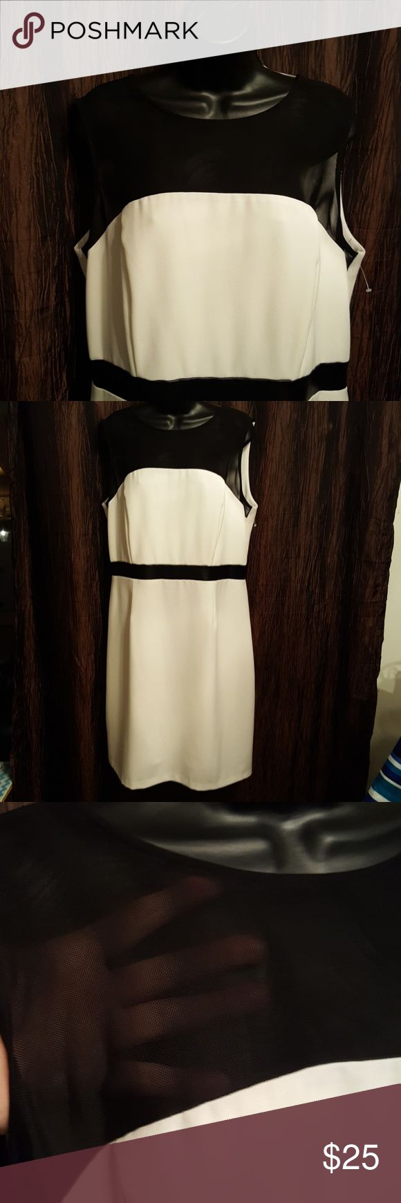 """Faux Leather NWOT~ Beautiful White & Black Fully lined Sleeveless Dress. Zipper in Back. Faux leather trim. Length measure shoulder to hem 39"""" Bust measures up too 40 SANDRA DARREN Dresses Midi"""