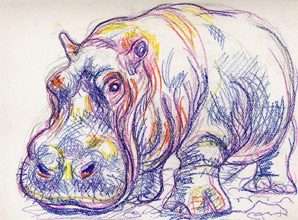 hippos, artists | Leon Cannon