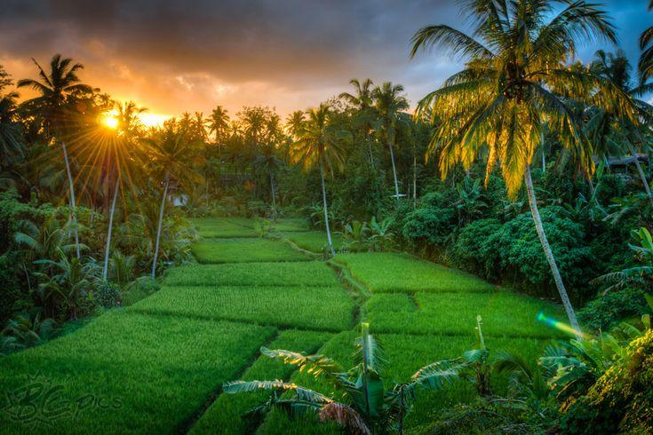 Gambar gambar pemandangan alam indah | Pemandangan