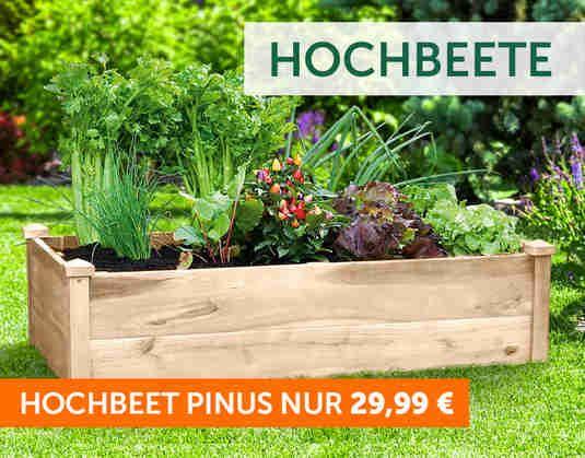 Gartenversand Und Pflanzenversand Gartner Potschke In 2020 Gartenbedarf Hochbeet Pflanzen