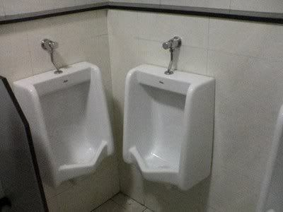 Our well fitted urinals.