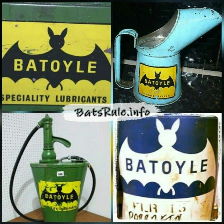 #misc more pics http://www.batsrule.info/2017/05/batoyle.html . The Batoyle Freedom group is one of the UK's largest independent lubricant manufacturing companies. A subsidiary of Batoyle Holdings. . http://www.batoyle.co.uk . #batsrule #bats #megabat #flyingfox #fruitbat #wildlife #microbat #batsofinstagram #followme #fledermaus