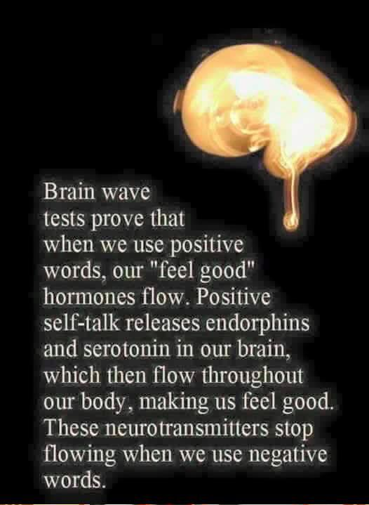 This one combines my interest in neuroscience with my passion for creating positive energy -- in myself & others.