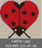 ladybug heart