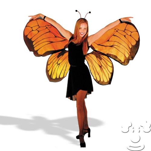 39 dollar glasses sexy butterfly costume   Fly A Way Butterfly Wings Adult  18251  131463  butterfly  butterfly