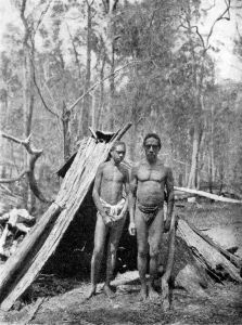 A small bark shelter (gunyah) built over a wooden frame, used in woodland areas.